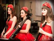 Электро-акустичсекое выступление Violin Group DOLLS