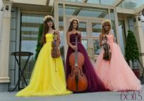 Струнное трио Violin Group DOLLS
